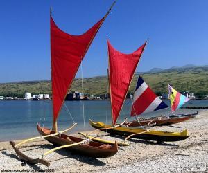 Puzzle de Canoas tradicionales, Pacifico