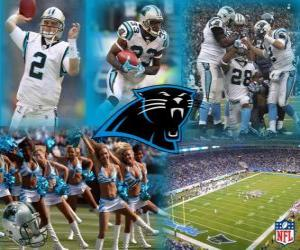 Puzzle de Carolina Panthers