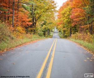 Puzzle de Carretera en otoño