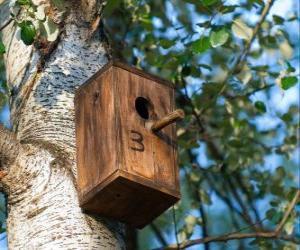 Puzzle de Casita de madera para los pájaros en primavera