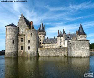 Puzzle de Castillo de Sully-sur-Loire, Francia