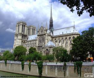 Puzzle de Catedral de Notre Dame, FR