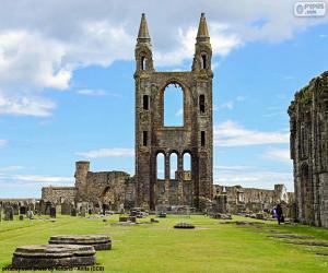 Puzzle de Catedral de St. Andrews, Escocia