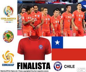 Puzzle de CHI finalista C. América 16