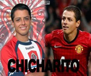 Puzzle de Chicharito