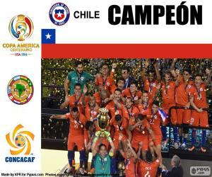 Puzzle de Chile campeón C. América 16