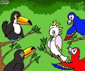 Puzzle de Cinco pájaros de Julieta Vitali