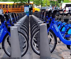 Puzzle de Citi Bike, Nueva York