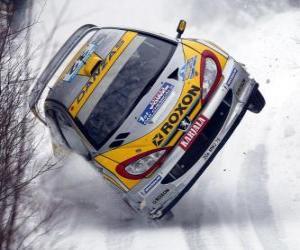 Puzzle de Coche de Rally sobre la nieve