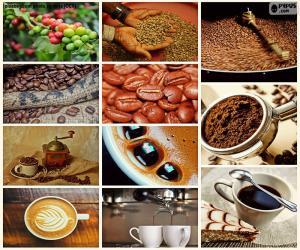 Puzzle de Collage del Café
