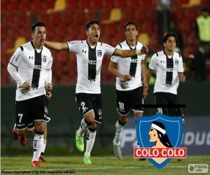 Puzzle de Colo-Colo, Apertura 2015