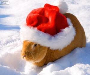 Puzzle de Conejo con un gorro de Papá Noel