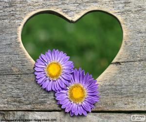 Puzzle de Corazón y dos flores