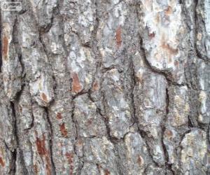 Puzzle de Corteza de pino