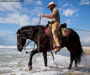 Puzzle de Cowboy junto al mar