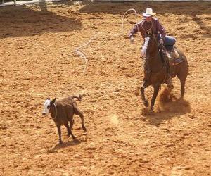 Puzzle de Cowboy o vaquero cabalgando y atrapando una res con el lazo