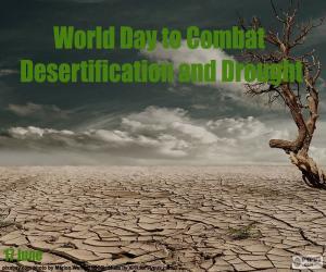Puzzle de Día Mundial de Lucha contra la Desertificación