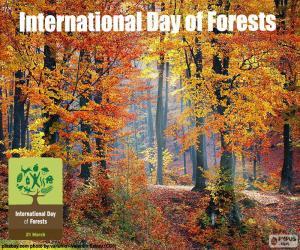 Puzzle de Día Internacional de los Bosques
