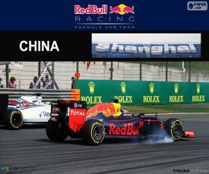 Puzzle de D. Kuyat G.P de China 2016