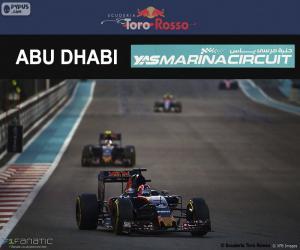 Puzzle de D. Kvyat, GP Abu Dhabi 2016