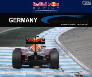 Puzzle de D. Ricciardo GP Alemania 16