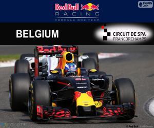 Puzzle de D Ricciardo GP Bélgica 2016