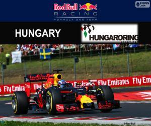 Puzzle de D. Ricciardo, GP Hungría 16