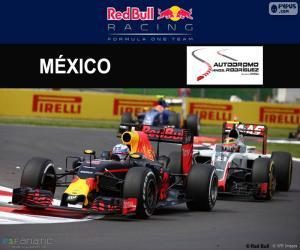 Puzzle de D. Ricciardo GP México 2016
