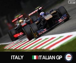 Puzzle de Daniel Ricciardo - Toro Rosso - Monza, 2013