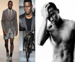 Puzzle de David Agbodji modelo frances
