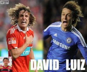 Puzzle de David Luiz