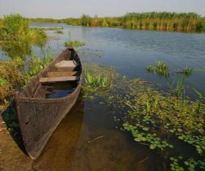 Puzzle de Delta del Danubio, el delta más extenso y mejor preservado de toda Europa. Rumania.