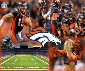 Puzzle de Denver Broncos