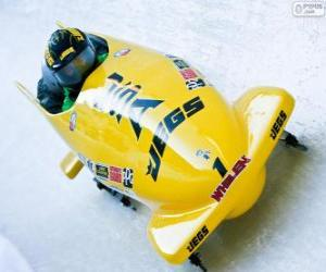 Puzzle de Descenso en bobsleigh o bobsled