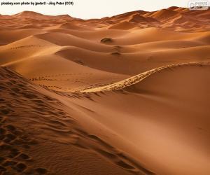 Puzzle de Desierto de Marruecos