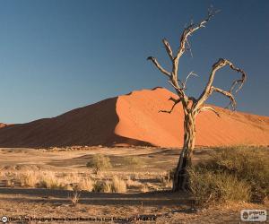 Puzzle de Desierto del Namib, Namibia