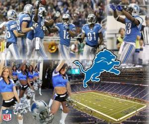 Puzzle de Detroit Lions