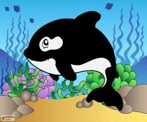 Puzzle de Dibujo de un Orca
