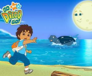 Puzzle de Diego en la playa y una tortuga marina en el agua