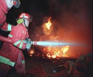 Puzzle de Dos bomberos en acción