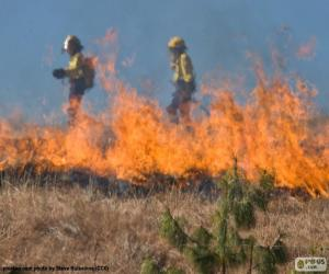 Puzzle de Dos bomberos, fuego