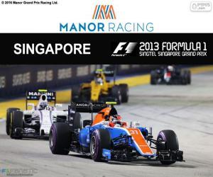 Puzzle de E. Ocon, GP Singapur 2016
