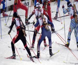 Puzzle de El biatlón en un deporte de invierno que consiste en combinar el esquí de fondo con el tiro al blanco.