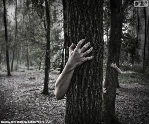 Puzzle de El bosque del horror