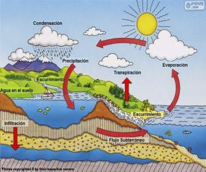 Puzzle de El ciclo del agua (es)
