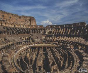 Puzzle de El Coliseo, interior