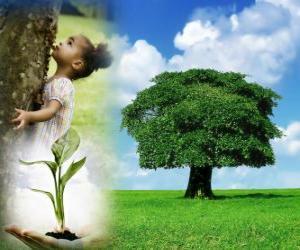 Puzzle de El Día del Árbol se celebra el último viernes de abril en Estados Unidos. En otros países se celebra en diferentes fechas durante la temporada adecuada de plantación