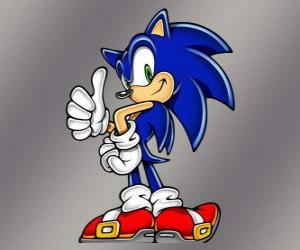 Puzzle de El erizo Sonic, protagonista principal de los videojuegos Sonic de Sega