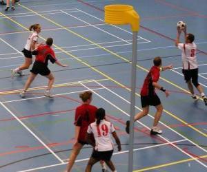 Puzzle de El korfbal, también llamado balonkorf, es un deporte de equipo jugado entre dos equipos que buscan introducir una pelota dentro de una canasta.