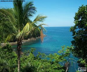 Puzzle de El mar desde una isla tropical